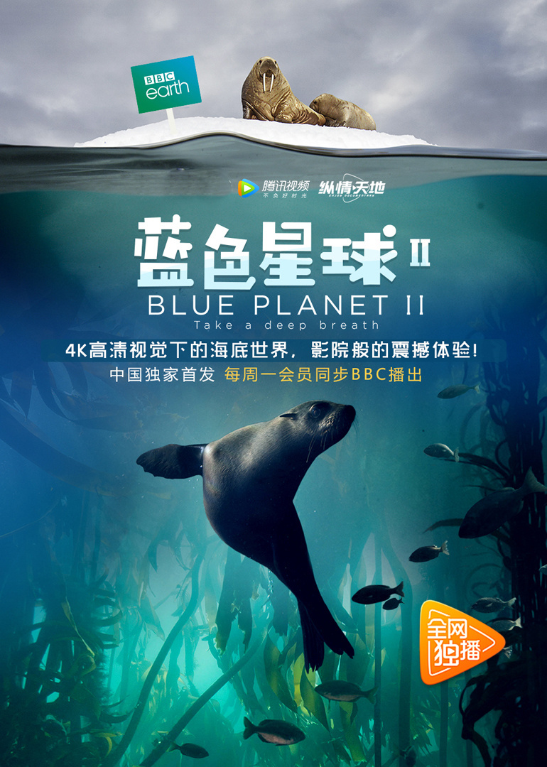 蓝色星球2 [9.9分的海洋纪录片,配合9.9分的地球脉动2食用更佳,搭配本站提供的高清播放器你会发现一个新的世界]
